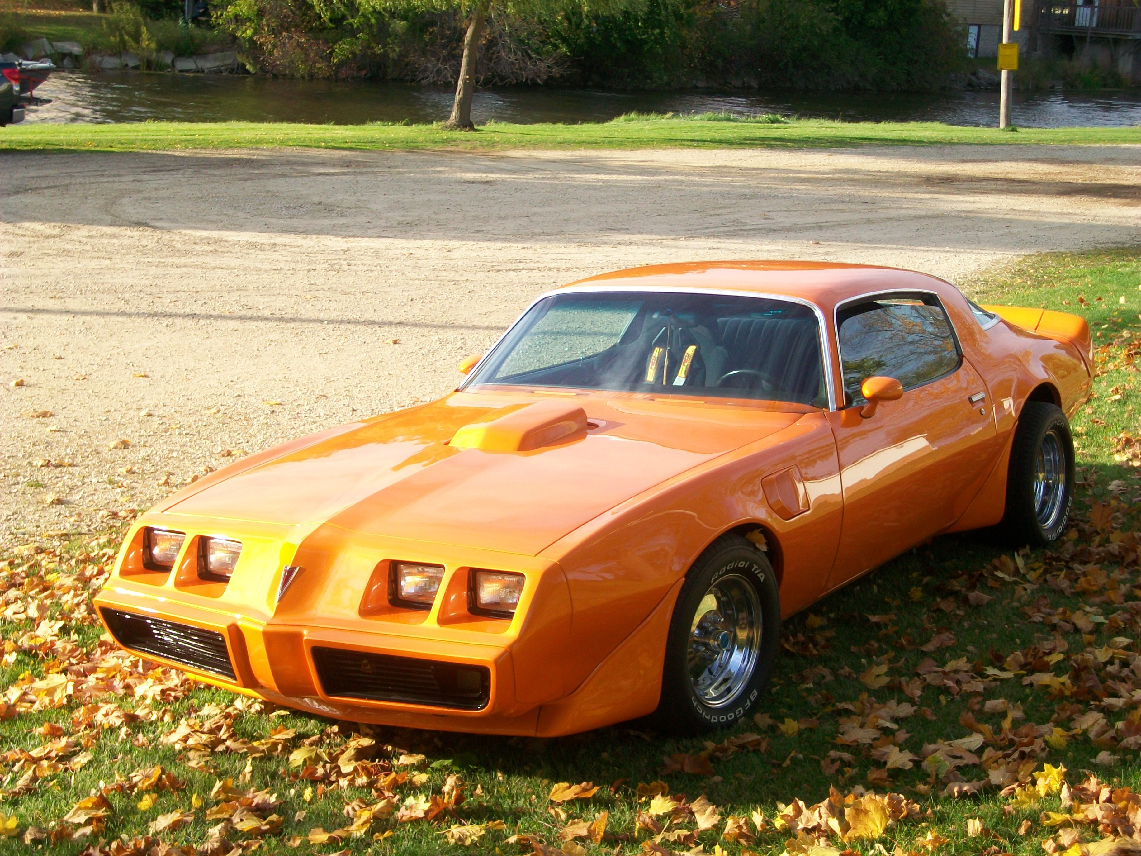 Another jimmybee 1979 Pontiac Trans Am post... - 12615025