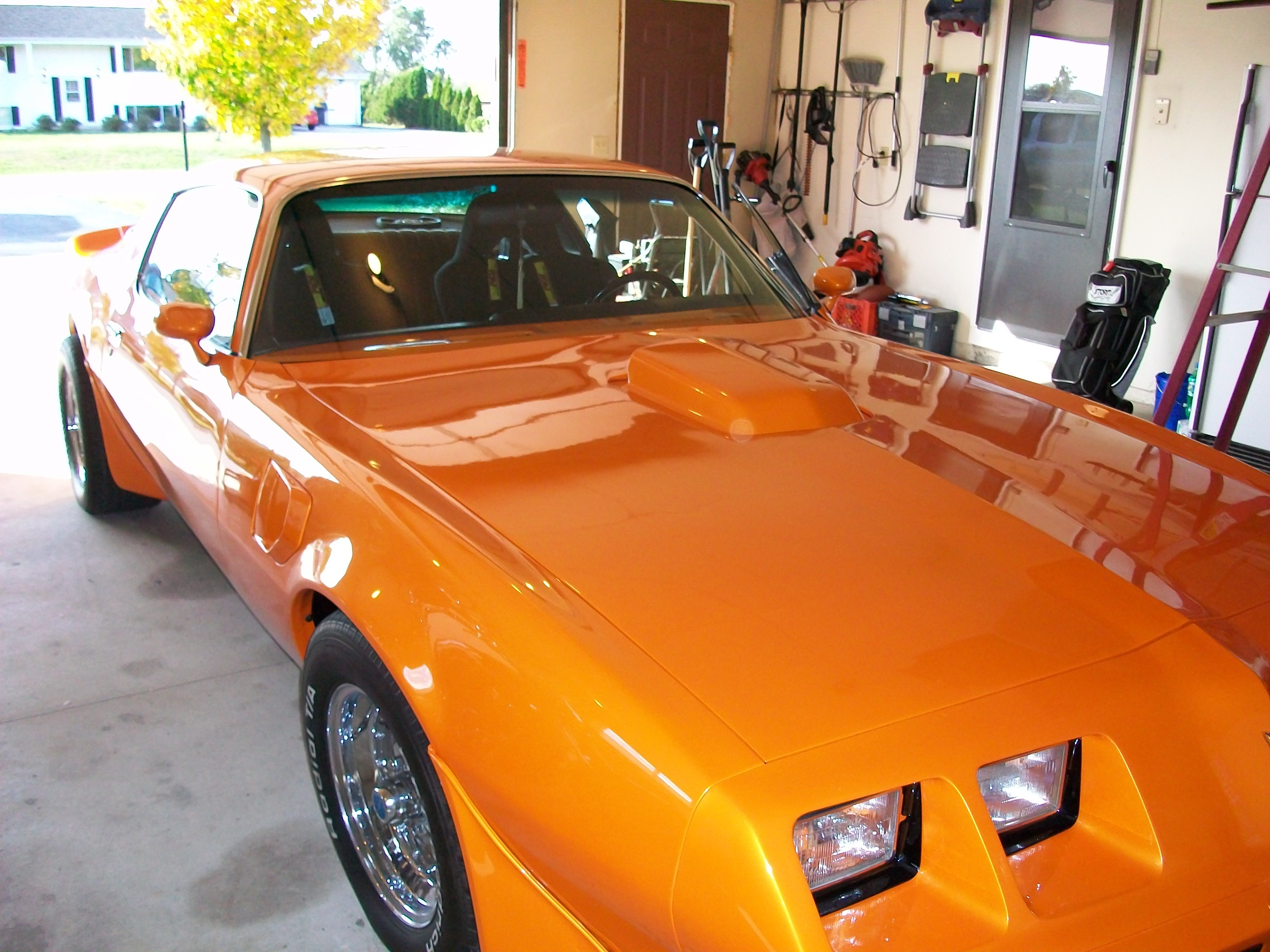 Another jimmybee 1979 Pontiac Trans Am post... - 12615029