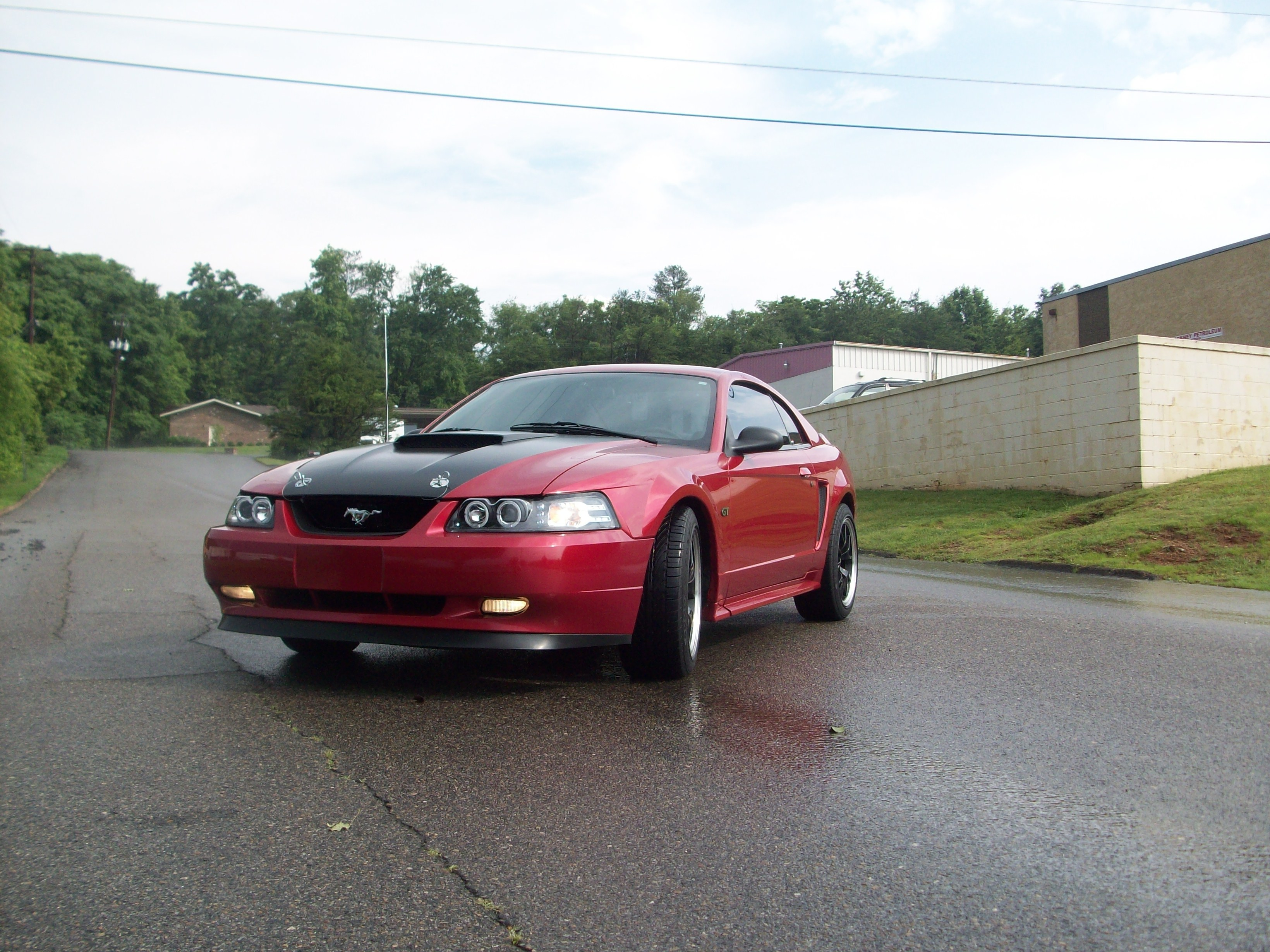 acorn roxy 2000 ford mustang specs photos modification info at cardomain. Black Bedroom Furniture Sets. Home Design Ideas