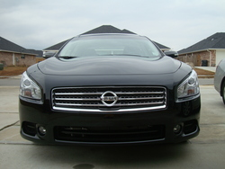 LILAZNSHAGGY09s 2009 Nissan Maxima