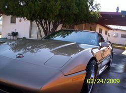 99diamondwites 1984 Chevrolet Corvette