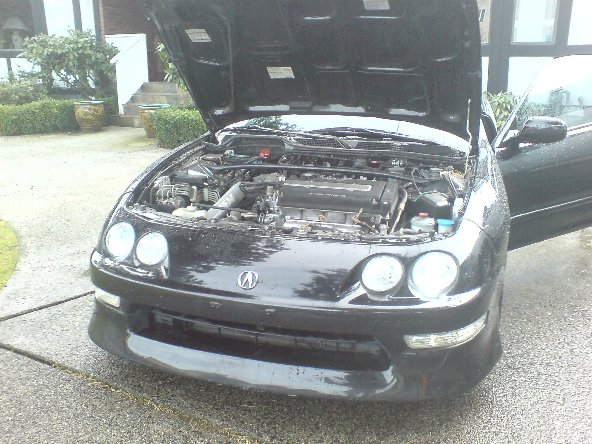 Another 92CivicSiHb 2000 Acura Integra post... - 12686546