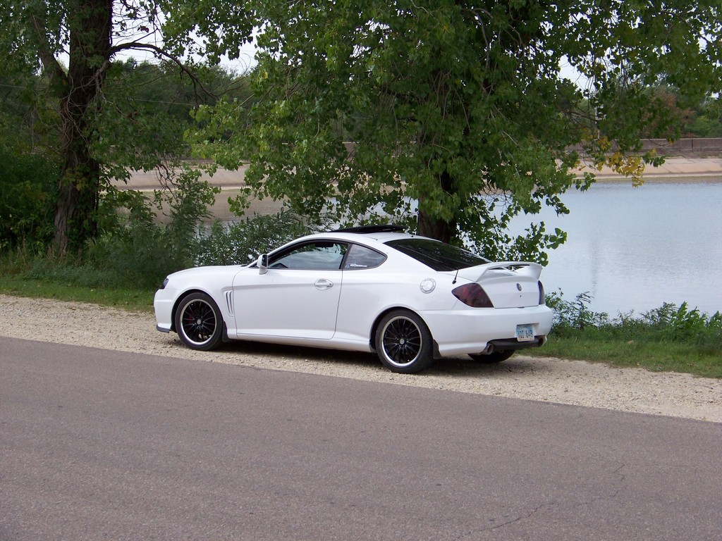 eldoshark03 39 s 2003 hyundai tiburon gt coupe 2d in wichita ks. Black Bedroom Furniture Sets. Home Design Ideas