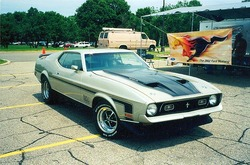 Scott71mach429s 1971 Ford Mustang