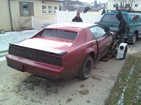 Another Stippy17 1984 Pontiac Trans Am post... - 12691593