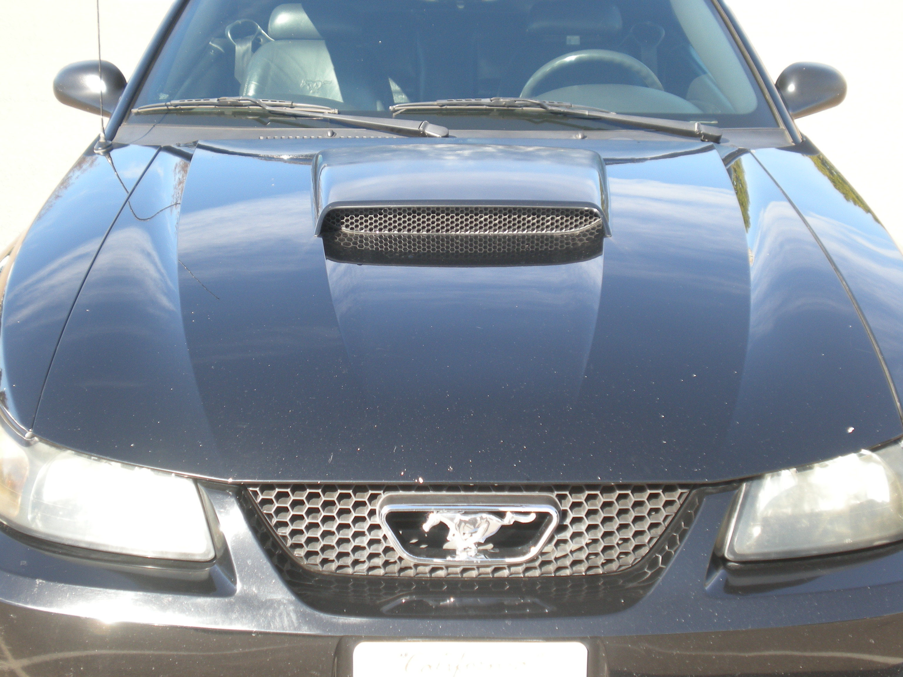 Another JerkVegas86 2001 Ford Mustang post... - 12751904