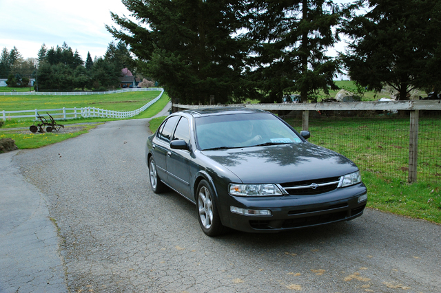 Another melophiliac 1995 Nissan Maxima post... - 12765404
