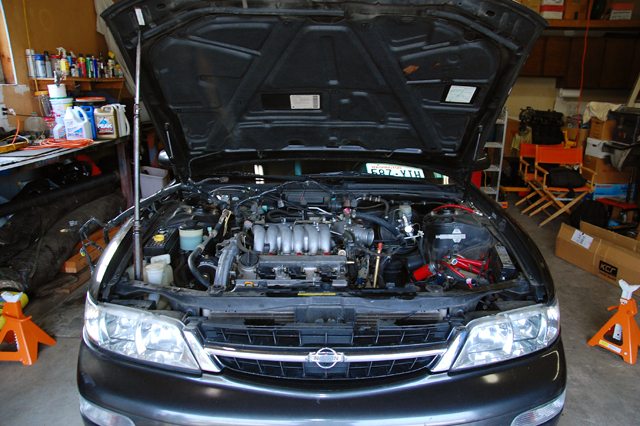 Another melophiliac 1995 Nissan Maxima post... - 12765405