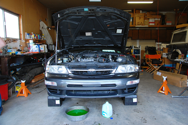 Another melophiliac 1995 Nissan Maxima post... - 12765406