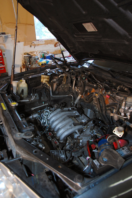 Another melophiliac 1995 Nissan Maxima post... - 12765417