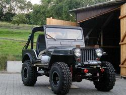 Superswamperq78 1950 Jeep Willys
