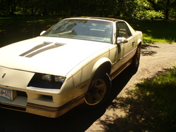 1984_Z28_Camaros 1984 Chevrolet Camaro