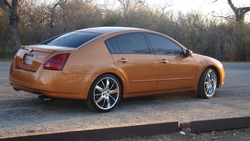 DANIELS1s 2004 Nissan Maxima