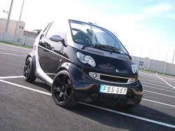 smart_mike 2003 smart fortwo
