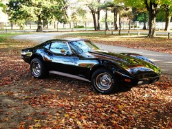surferbear01 1973 Chevrolet Corvette