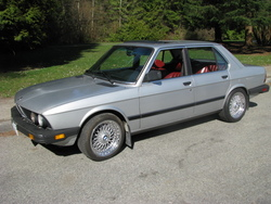 shocka79s 1983 BMW 5 Series