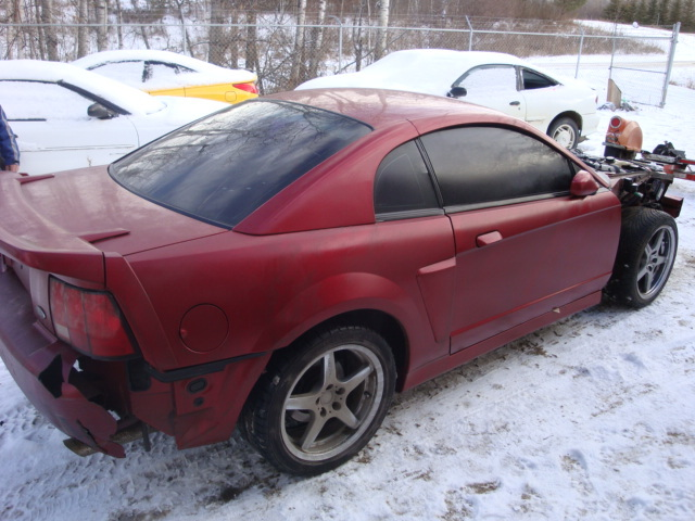 Another restlessdreams 2003 Ford Mustang post... - 12808036