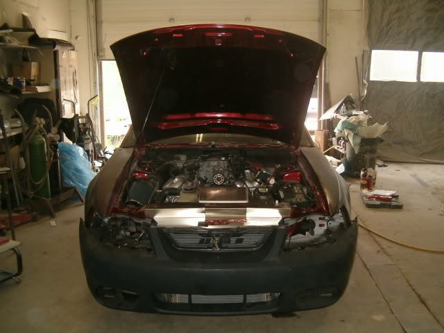 Another restlessdreams 2003 Ford Mustang post... - 12808049