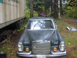 caseymurry 1972 Mercedes-Benz 280SE