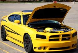 BadazBee-423s 2007 Dodge Charger