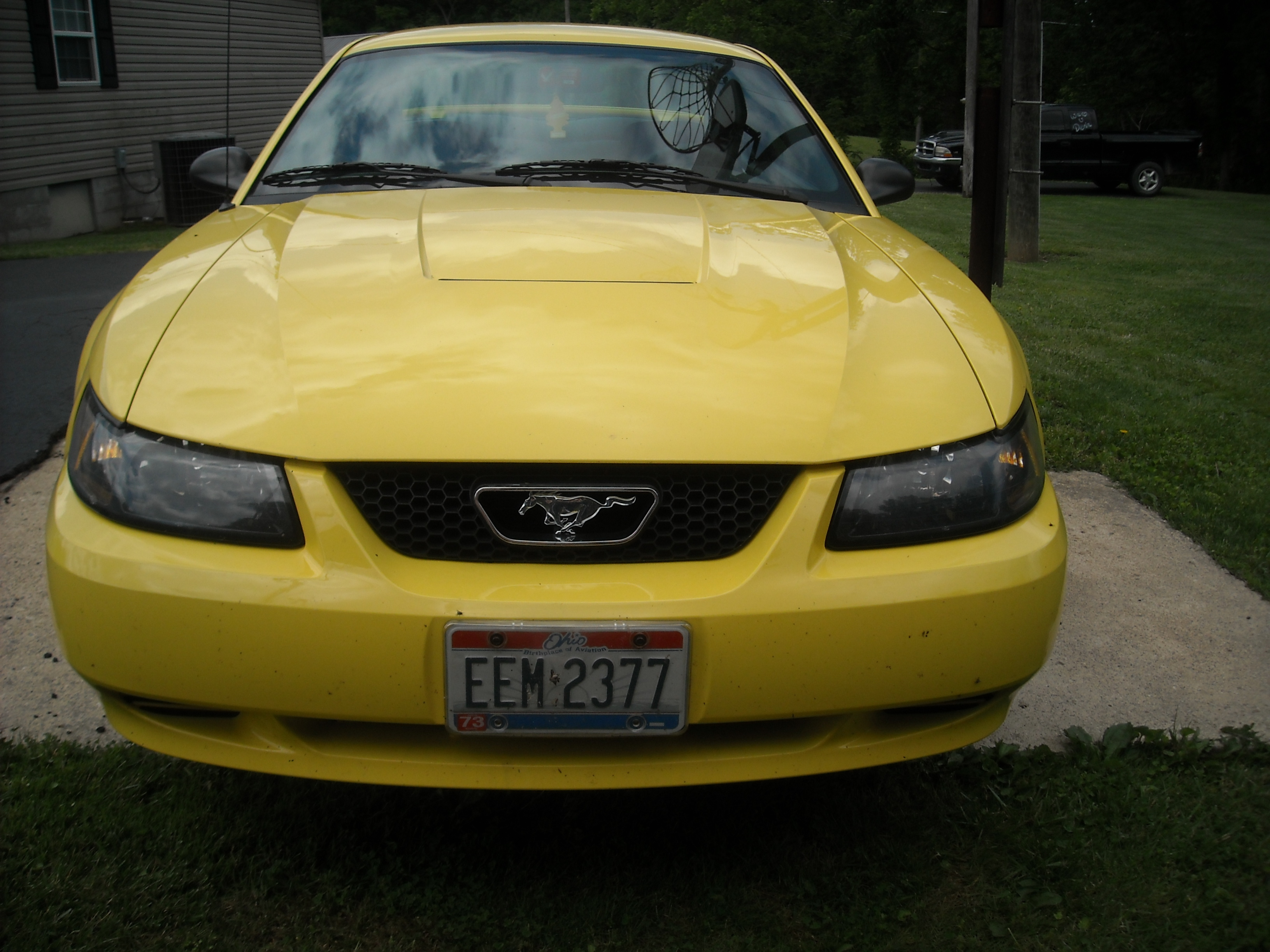 Another bordasel 2003 Ford Mustang post... - 12887815