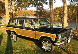 DODGE-GIRL 1991 Jeep Grand Wagoneer