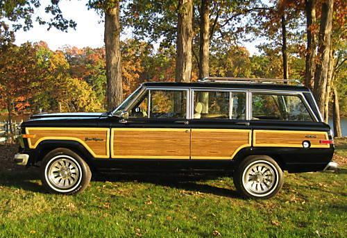 Another DODGE-GIRL 1991 Jeep Grand Wagoneer post... - 12825107