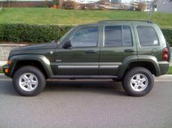 vintageroy13s 2006 Jeep Liberty