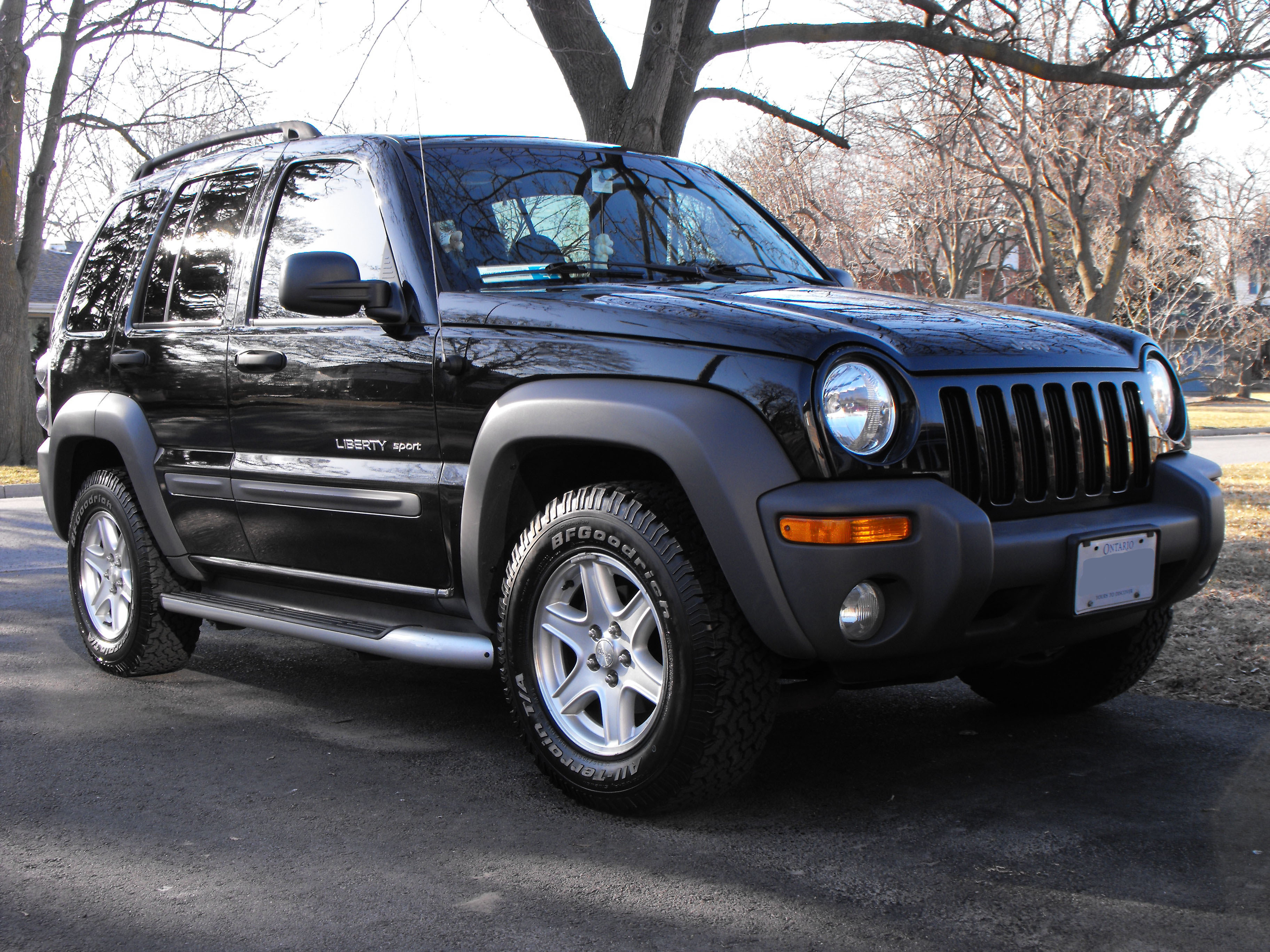 sweepnchoke 2002 jeep liberty specs photos modification info at cardomain. Black Bedroom Furniture Sets. Home Design Ideas