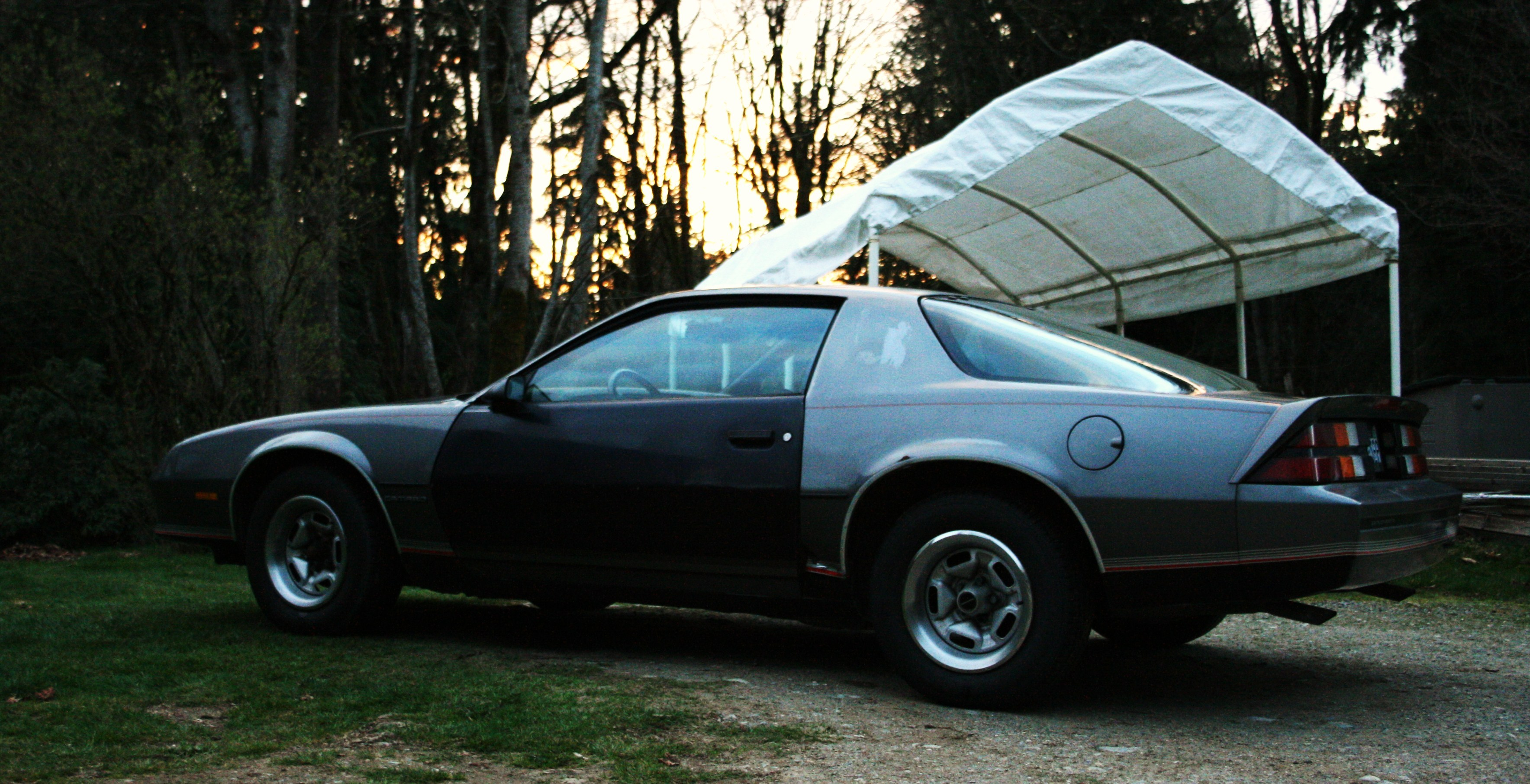 Another d00012 1987 Chevrolet Camaro post... - 12836290