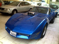 sadistic83s 1980 Chevrolet Corvette