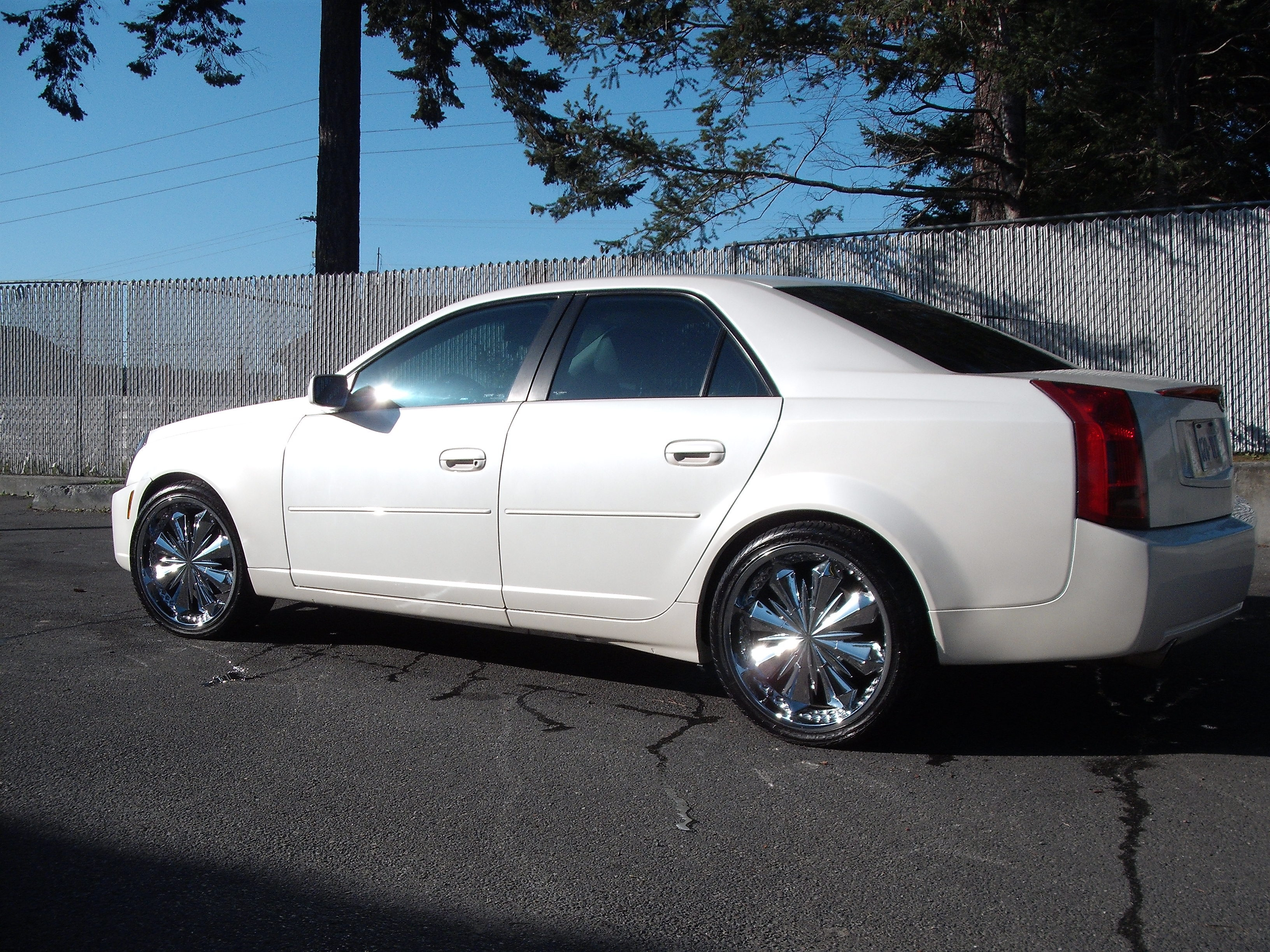 Another tissuckafree 2004 Cadillac CTS post... - 12856099