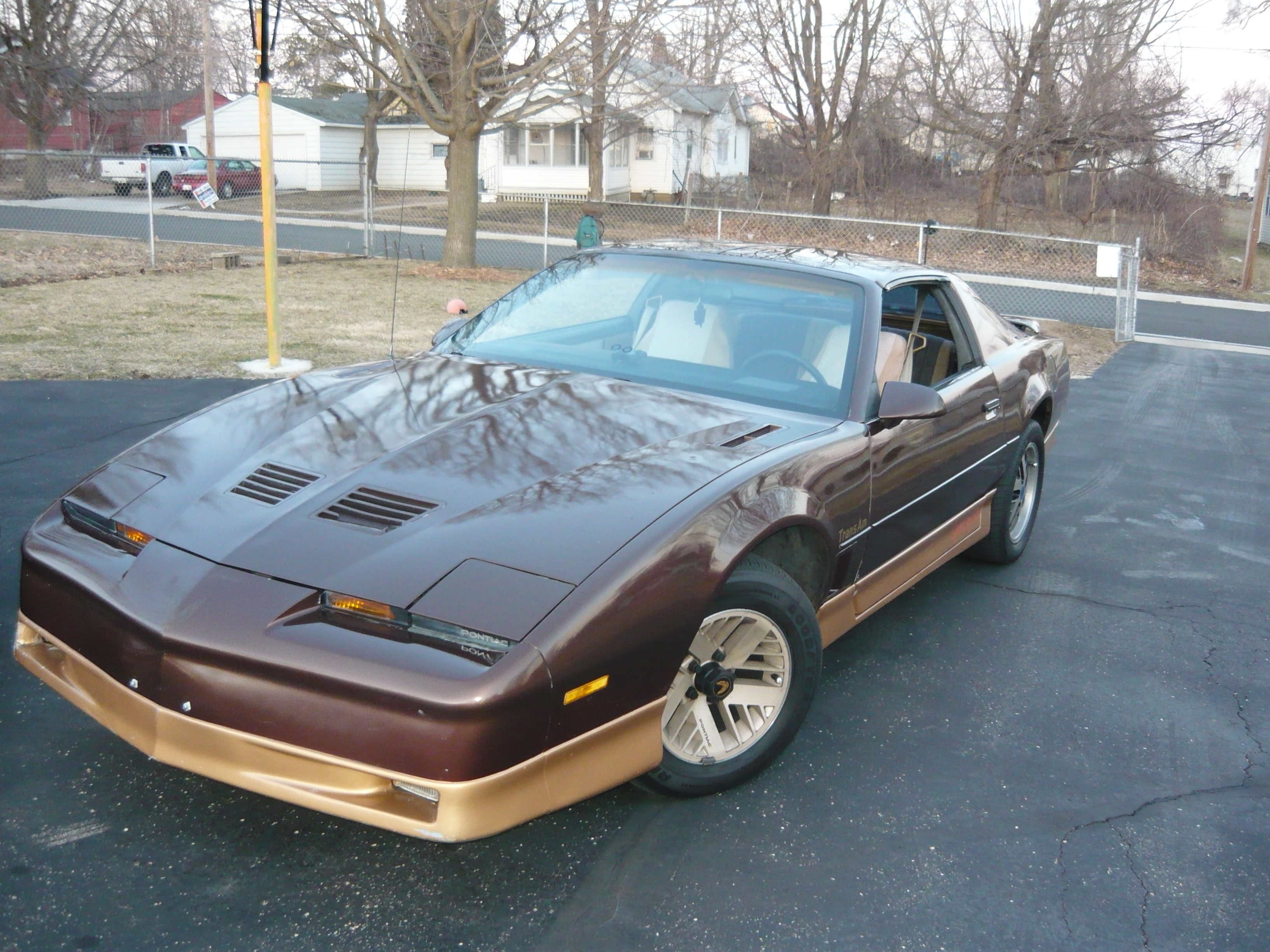 zackdizzle89 1986 pontiac trans am specs photos modification info at cardomain cardomain