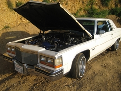 nastashawebbs 1982 Cadillac DeVille