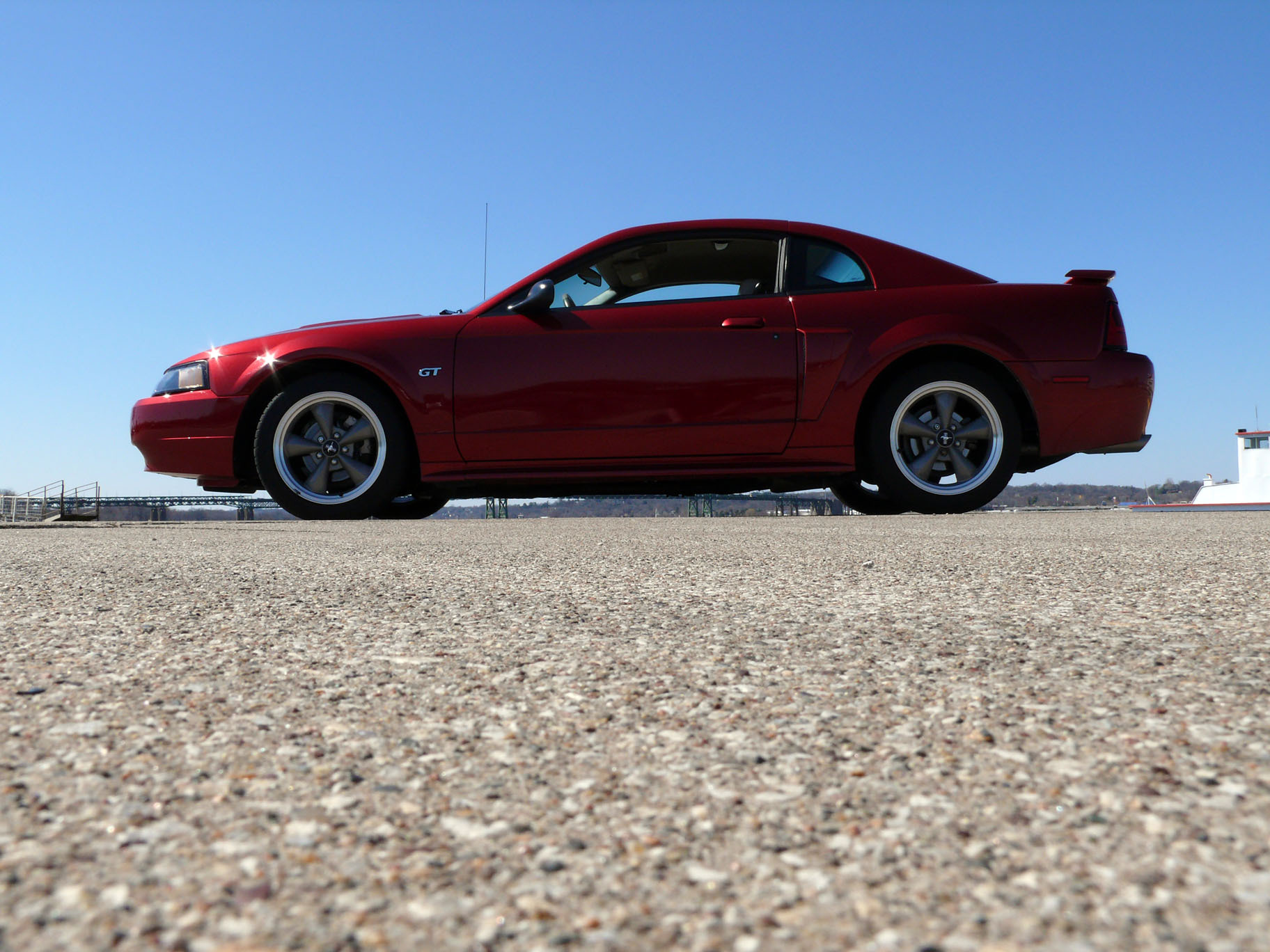 Another DSkunk 2003 Ford Mustang post... - 12891346