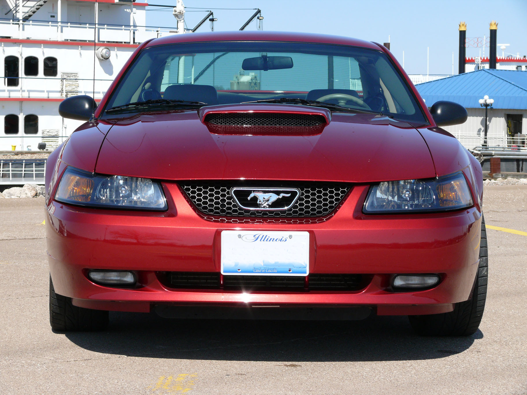 Another DSkunk 2003 Ford Mustang post... - 12891349