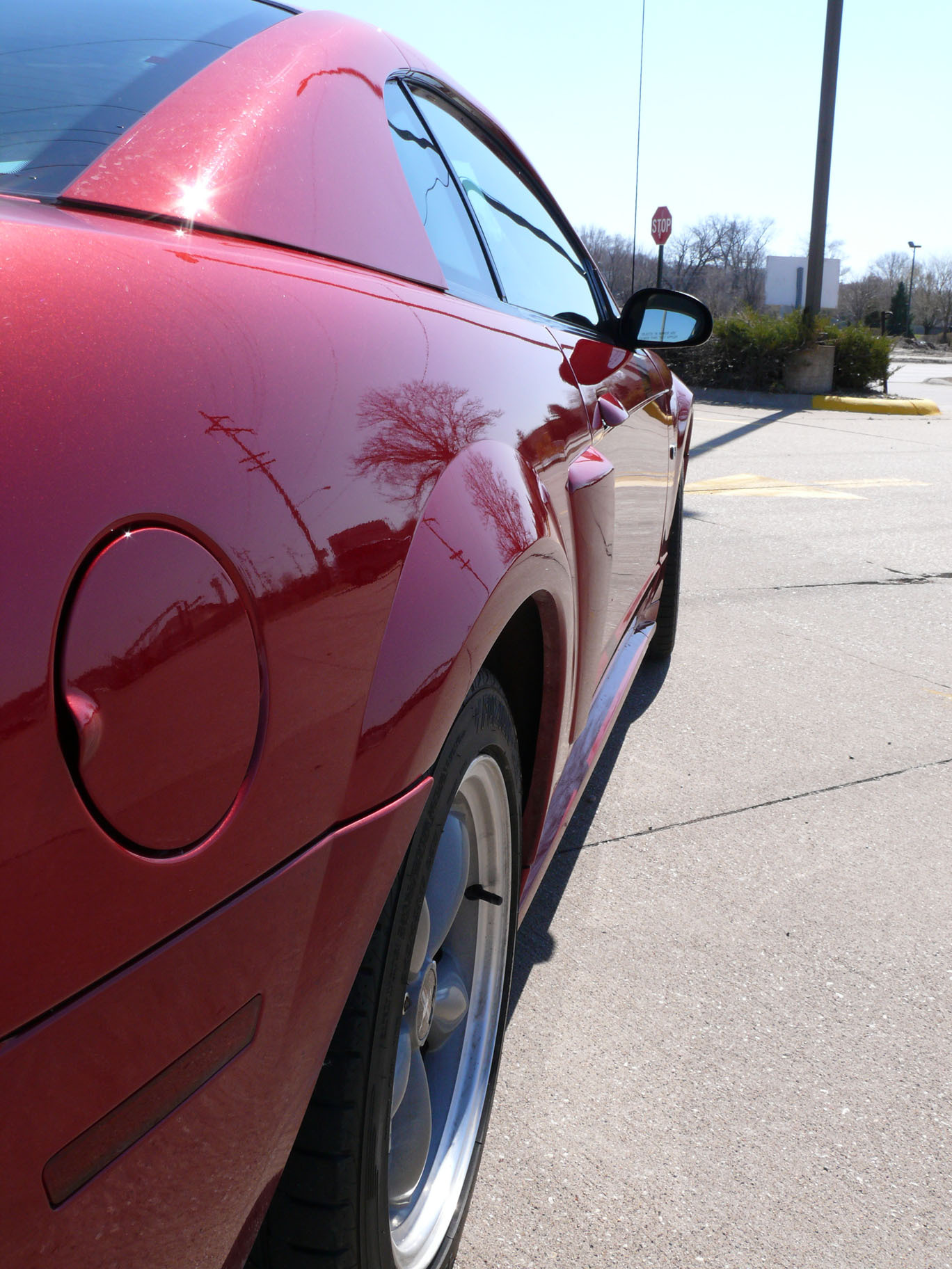 Another DSkunk 2003 Ford Mustang post... - 12891354