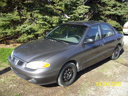 zim804s 1999 Hyundai Elantra