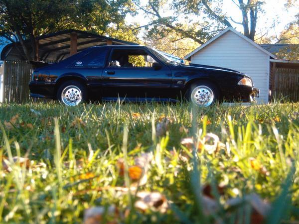 1MustangPrincess 1995 Ford Mustang 12923523