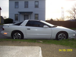 JoshDyes 1995 Pontiac Firebird