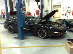 DavidShipton05s 1993 Pontiac Trans Am