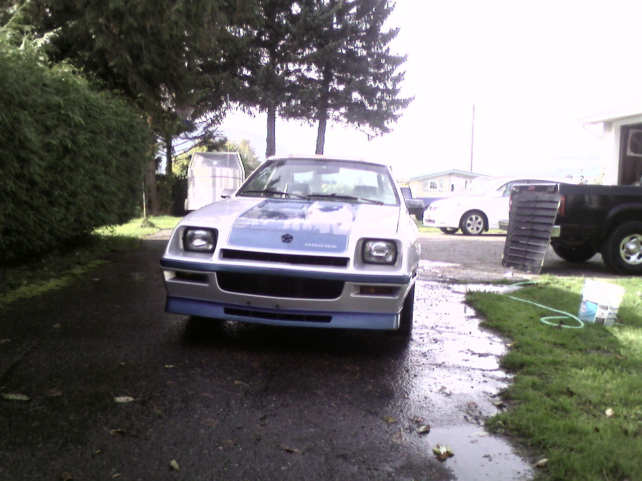 Another dievoob 1986 Dodge Charger post... - 12943242