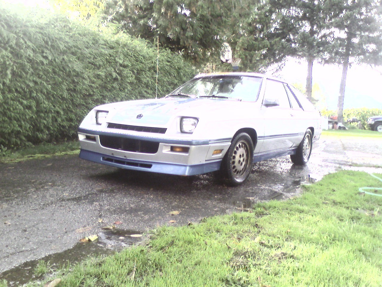 Another dievoob 1986 Dodge Charger post... - 12943243