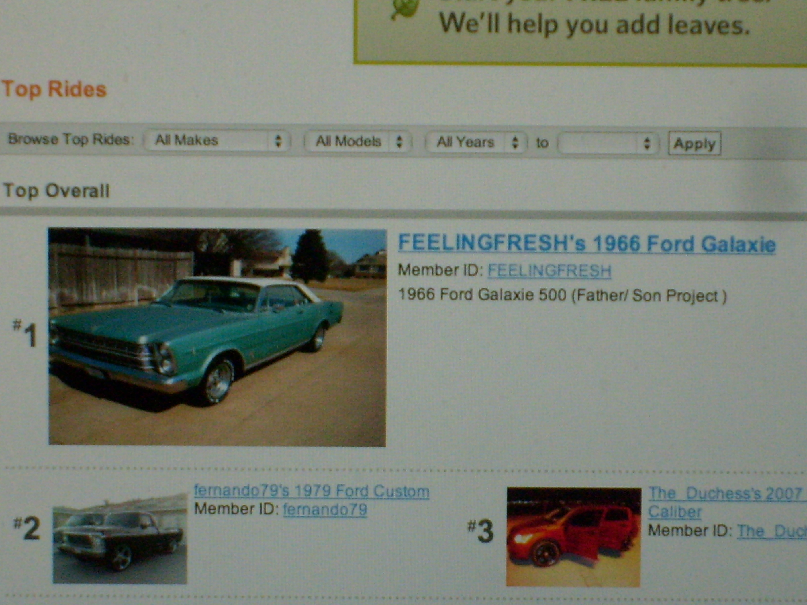 FEELINGFRESH 1966 Ford Galaxie 12946794