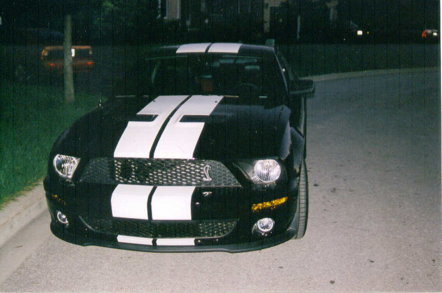 welchyboy's 2007 Shelby GT500