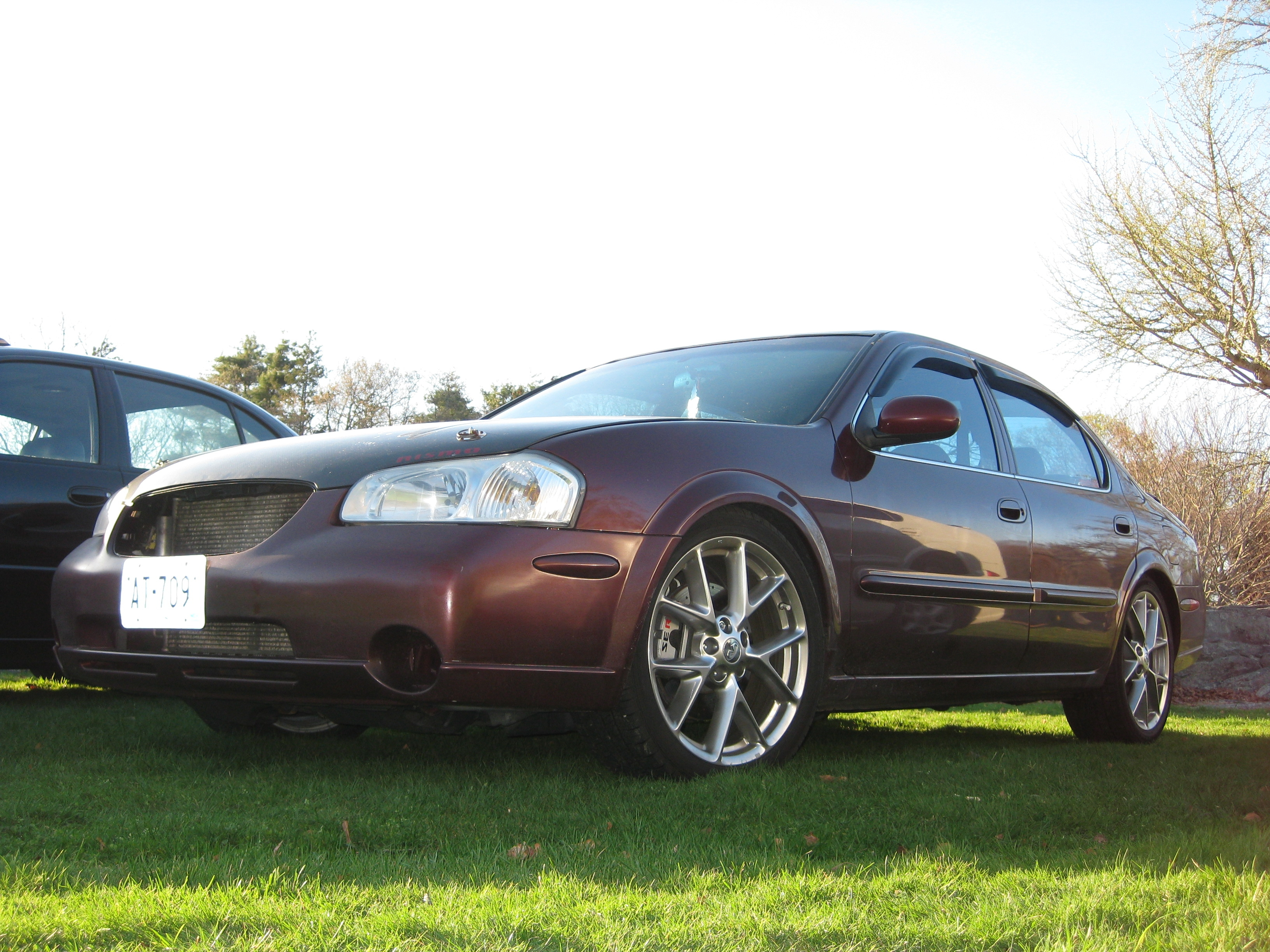 Another s1mply_v 2001 Nissan Maxima post... - 9545591