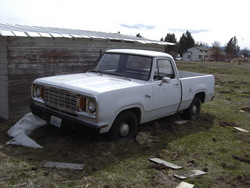 D10078 1978 Dodge D150 Club Cab