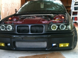 BULLDOG0620s 1995 BMW 3 Series