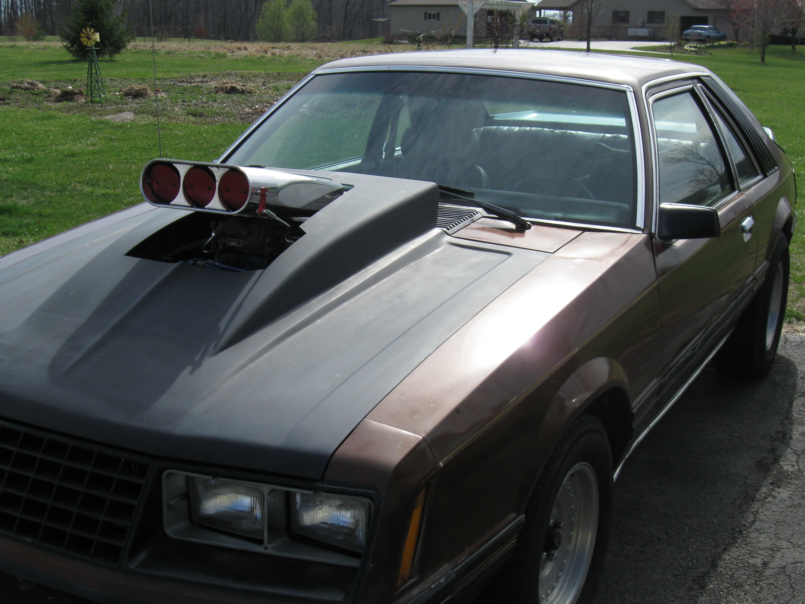 Shickybalboa 1980 Ford Mustang Specs Photos Modification