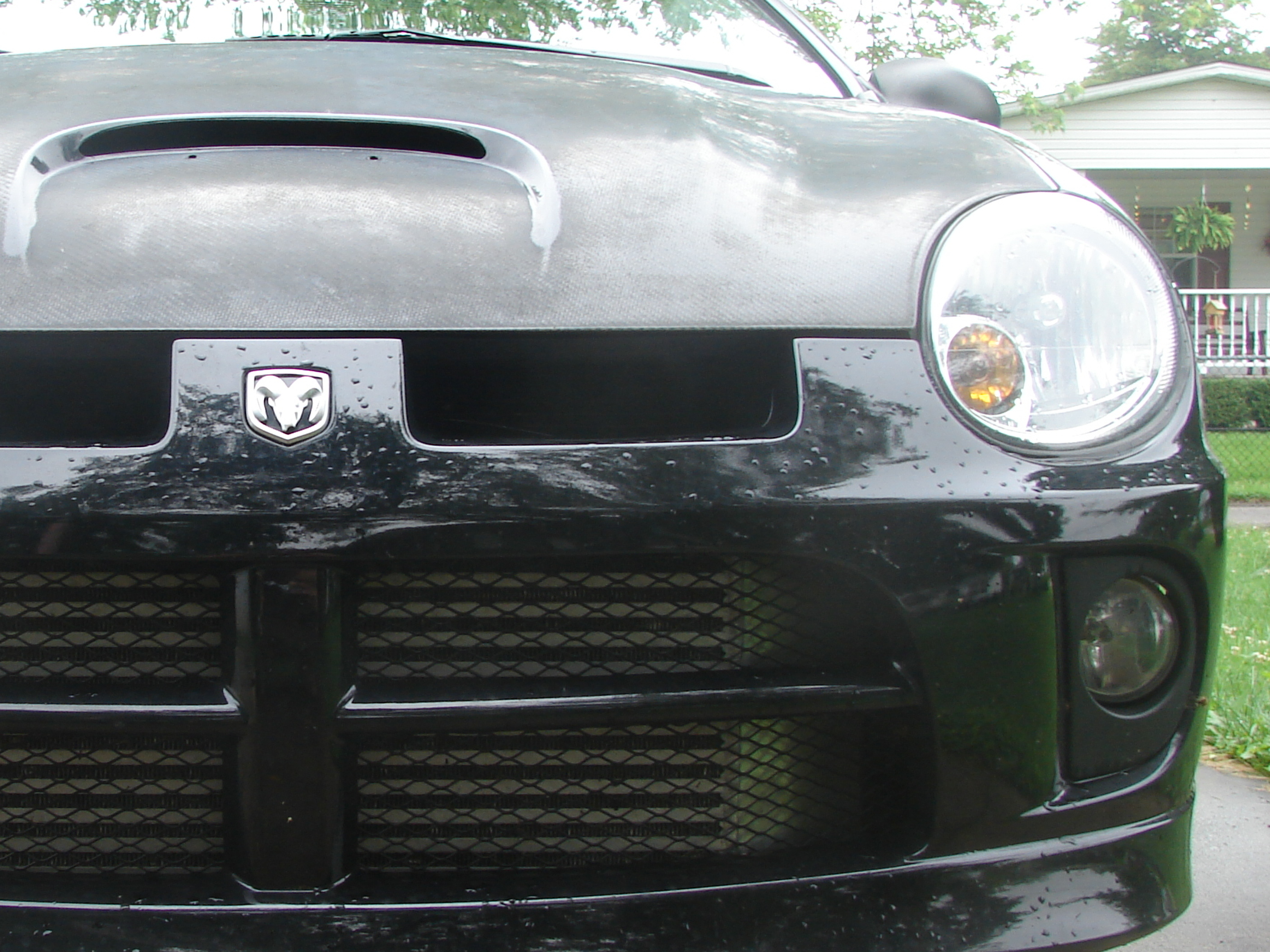 Blackoutsrt4 2004 Dodge Neon 13001833